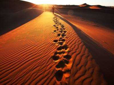 Explore the sand dunes beyond Swakopmund